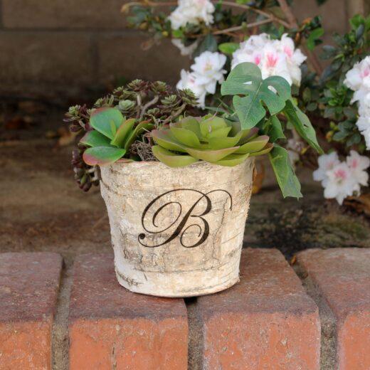 "Birch Bark Vase Round 5"" | B"
