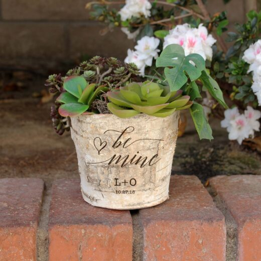 Birch Bark Vase Round 5"