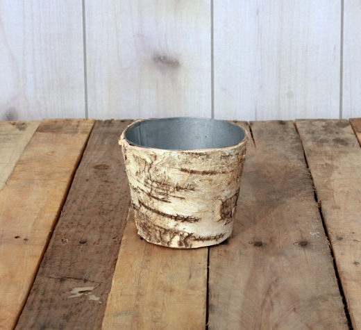 Birch Bark Planter Round 5"