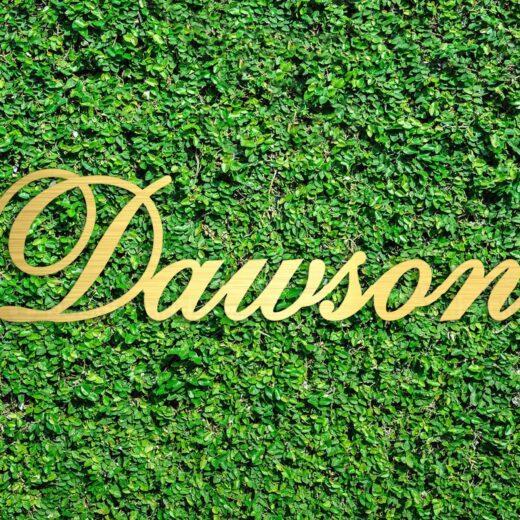 Wood Hedge Wall Sign | Dawson
